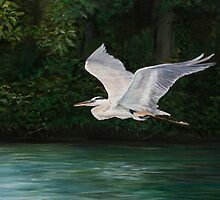 Fly By by Charlotte Yealey