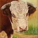 Jackpot the Bull by Margaret Stockdale