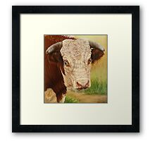Jackpot the Bull Framed Print