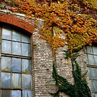 Autumnal Factory Wall by Christian Langenegger