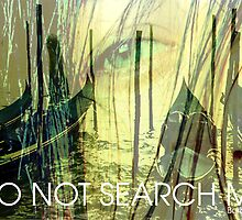 Do not search me by Catherina Zavodnik