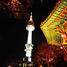 Namsan Tower by Michael Powell