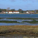 Langstone Harbour  by Sharon Perrett