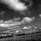 Farm Sky by ryanjbolger