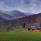 Blue Ridge Mountain Farms by Jane Best by Jane Best
