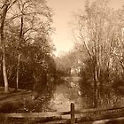 Mill Stream, Allaire, NJ by jaeepathak