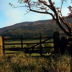 Simon's Seat, Yorkshire Dales by newbeltane
