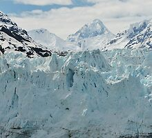 Glacier Bay National Park by DianaC