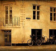 Copenhagen - The Esplanade by Jonicool
