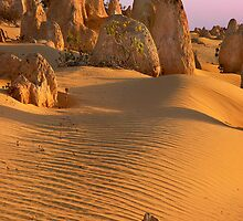 Pinnacles , Cervantes WA by Dianne English