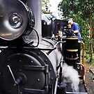 Puffing Billy by Alvin Wong
