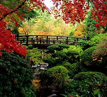 Falling for Fall Foilage at the Japanese Gardens by worldtripper
