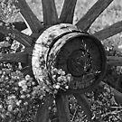 An Old Wagon Wheel by lloydsjourney