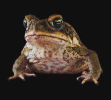 Grumpy Toad by Johan Larson