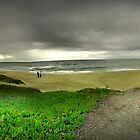 Halfmoon bay - State beach,California by electron