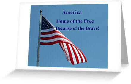 Flag, Home of the Free by Linda Jackson