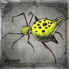 bug by giovanni damiano presenza