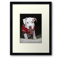 She Made Me Do It !! Framed Print