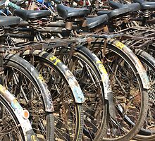 Commuter Bicycles, Mumbai, India by RIYAZ POCKETWALA