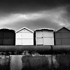 Monochrome Year by Andy Freer