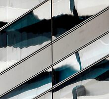 Building reflection with swans, Sydney Australia by luvdusty