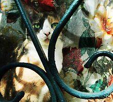 cat flower by ojoblanco