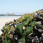 Godrevy with a difference by kimberly89