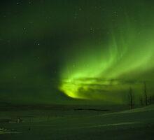 Aurora Borealis by Piotr Szuszkiewicz