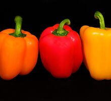 Three Bell Peppers #2  by Jeffrey  Sinnock