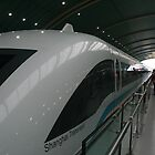 The Maglev-fastest train in China 431klms/hr by elphonline