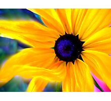 Shine Like You Mean It! Photographic Print
