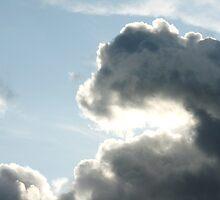 Dinosaur cloud? by Samuel Schaar