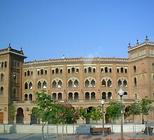 plaza de toros by dennis wingard