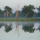Kakadu NP and Arnhem Land, NT, Australia by Speedy