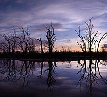 Moody Morning. by Steve Chapple