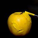 OGM by MelaB