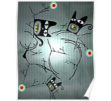 Lighting nature black cats delicious birds  Poster