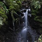 Reelig Glen Waterfall by Fraser Ross