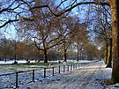 St James's Park, Winter by Themis
