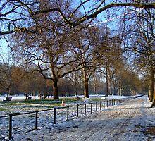 St James's Park, Winter by Themis