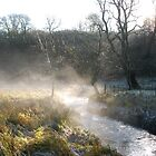 Malham early morning mist by Margaret Brown
