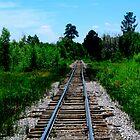 Forgotten Rails by DanTheBugleMan