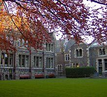 Christchurch by Marina Chenaux