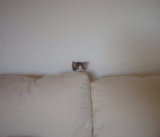 Peek a boo by fourthangel