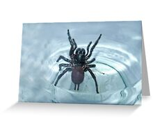"""'Unwelcome Visiter"""" Greeting Card"""