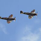 Pair of Spitfires at Duxford Autumn Airshow 2006 by Barry Culling