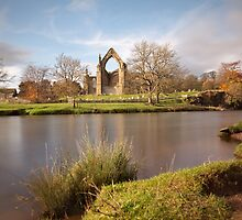The Wharfe At Bolton Abbey by SteveMG