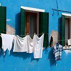 Burano, Venezia, Italy by Cathy Cormack