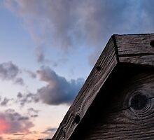 Shed Roof by Nautipuss