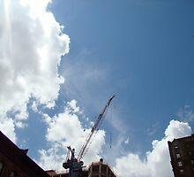 SKY CRANE by Renee Dahl
